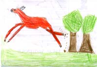 drawing of Jack's deer